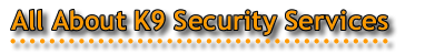 Security Services Contact